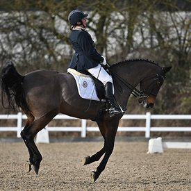14/02/2020 - Class 8 - British dressage - Brook Farm training centre - UK