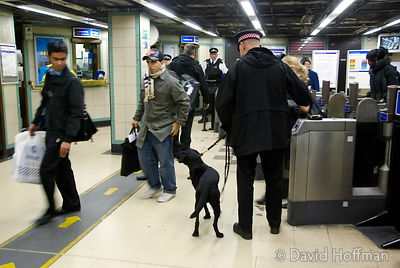 071129_DogDrugCheck_072 Police drug check with sniffer dogs checking passengers at Mile End Underground station, London. Dece...