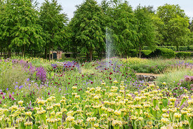 The Perennial Meadow at Scampston Hall Walled Garden, North Yorkshire, designed by Piet Oudolf, looking towards the Katsura G...