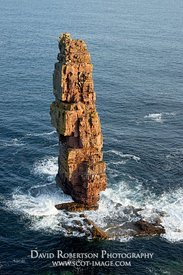 Image - Am Buachaille sea stack, Sutherland