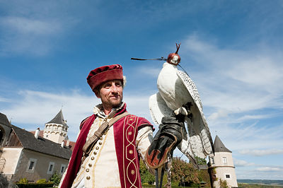 Falconry Centre, Schloss Rosenburg, Austria