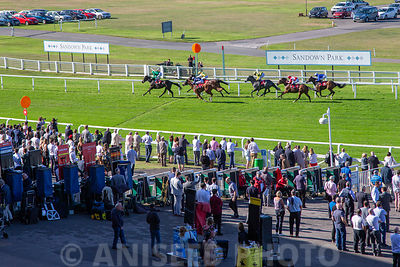 Aniseed_Photo_-_EN_Raceday_2019-198