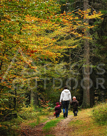 cxperrinautomne-HD_focus-outdoor-0003