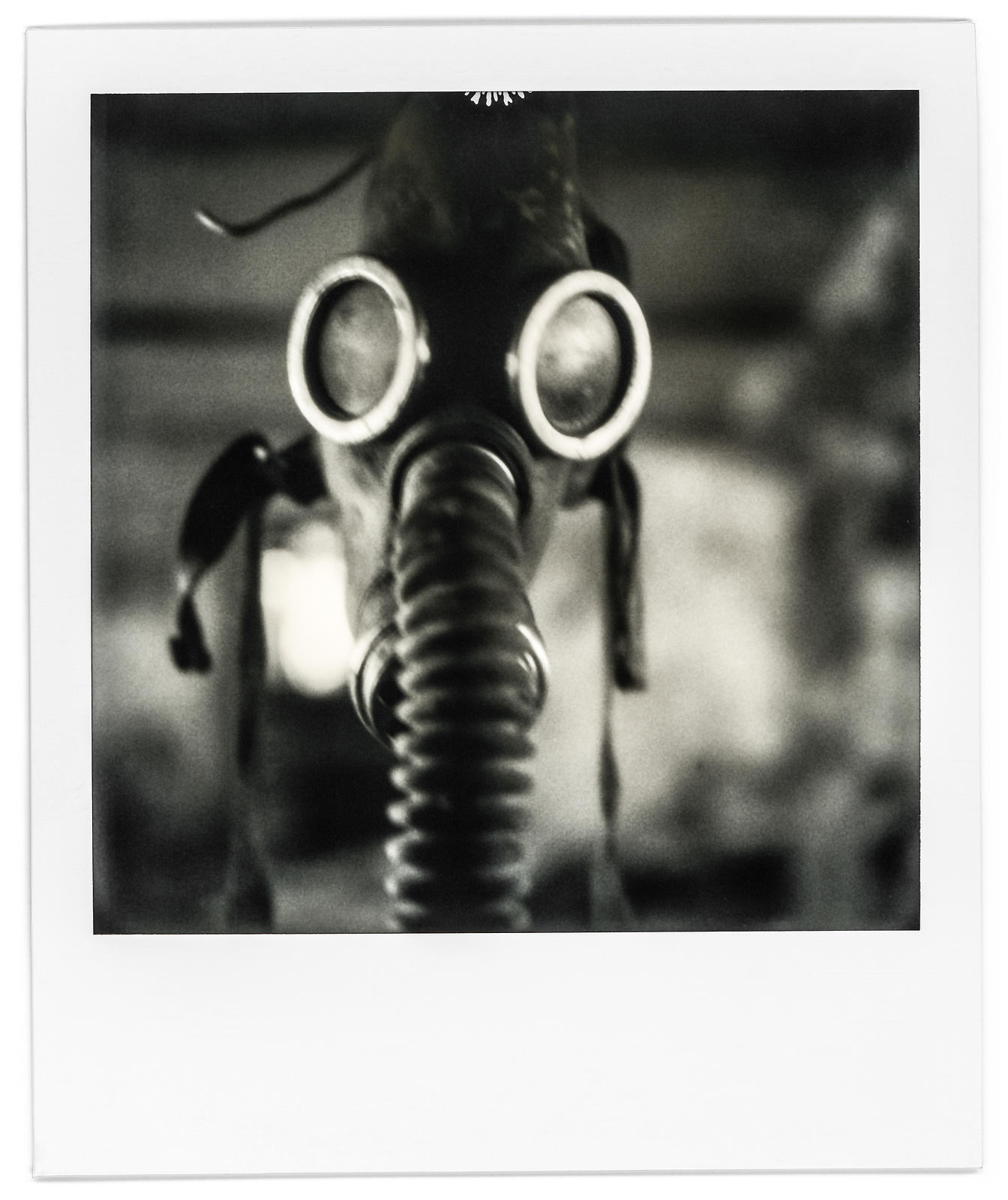 photo-polaroid-tchernobyl-chernobyl-5-2