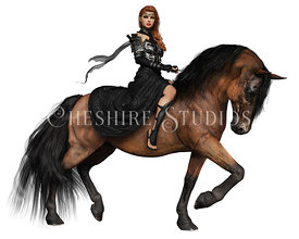 Fantasy Queen in Black Riding Bay Baroque Horse
