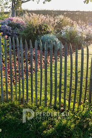 Wooden boundary fence