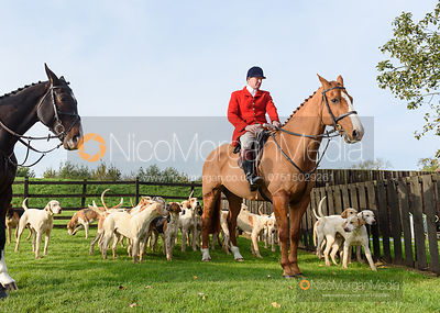 Chris Edwards at the meet - The Cottesmore Hunt at the kennels 31/10