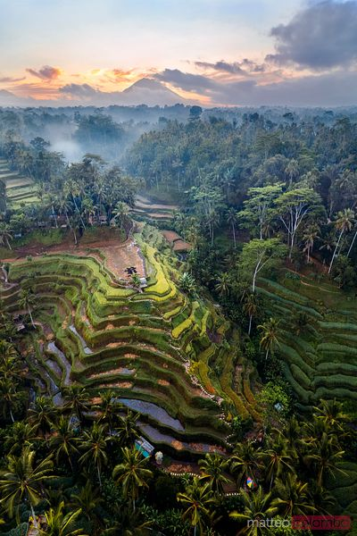 Aerial view of rice terraces and volcano, Bali, Indonesia