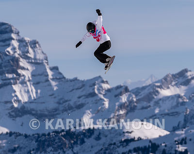 Freestyle_Snowboard