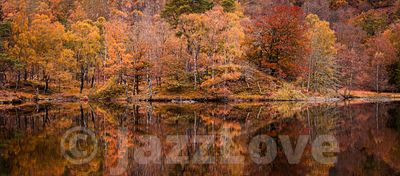 Reflection of colourful trees in lake.