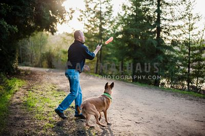 A man playing fetch with a frisbee with his malinois