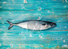 Whole fresh raw mackerel on a wooden board, top view