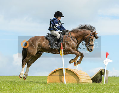60cm - Cottesmore Pony Club Tetrathlon