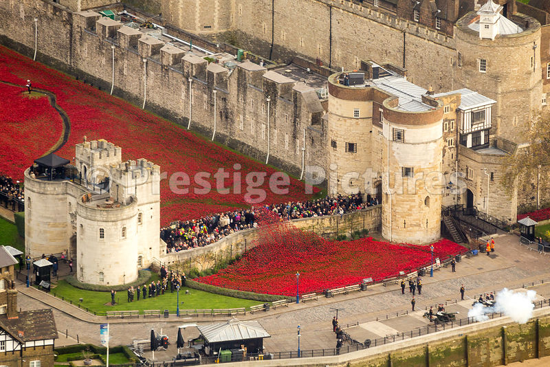 High Shot over The Tower of London's Poppy Installation with Guns Firing Leading up to  the Remembrance Ceremony at the eleve...