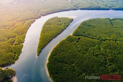 Aerial of river with heart shaped island, Phang Nga bay, Thailand