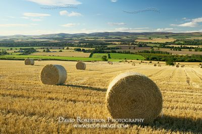 Image - View over Strathmore near Brechin, Angus, Scotland