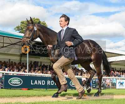 Francis Whittington and EVENTO at the trot up, Land Rover Burghley Horse Trials 2019