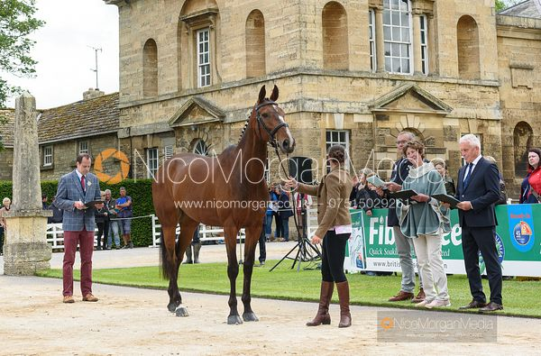 Katie Magee and DOLLARNEY at the trot up, Equitrek Bramham Horse Trials 2019