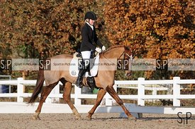 Unaffiliated dressage. Stapleford Abbotts. United Kingdom ~ MANDATORY Credit Ellen Szalai/SIP photo agency - NO UNAUTHORISED ...