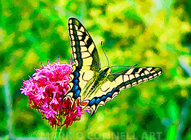 butterfly,art,painting,flowers,yellow,green,red