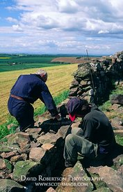 Image - Conservation volunteers learning dry stone walling, dyking, Scotland