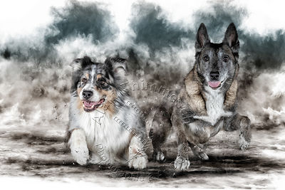 Art-Digital-Alain-Thimmesch-Chien-851