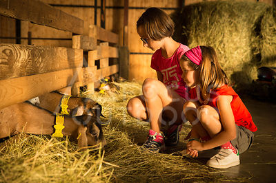 ferme-famille-HD_focus-outdoor-0005