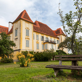Schloss_Wildbach_in_Austria-4218