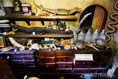 Open House Weekend London: Open House Weekend London: Animals and animal parts used in the Old Operating Theatre of the Old S...