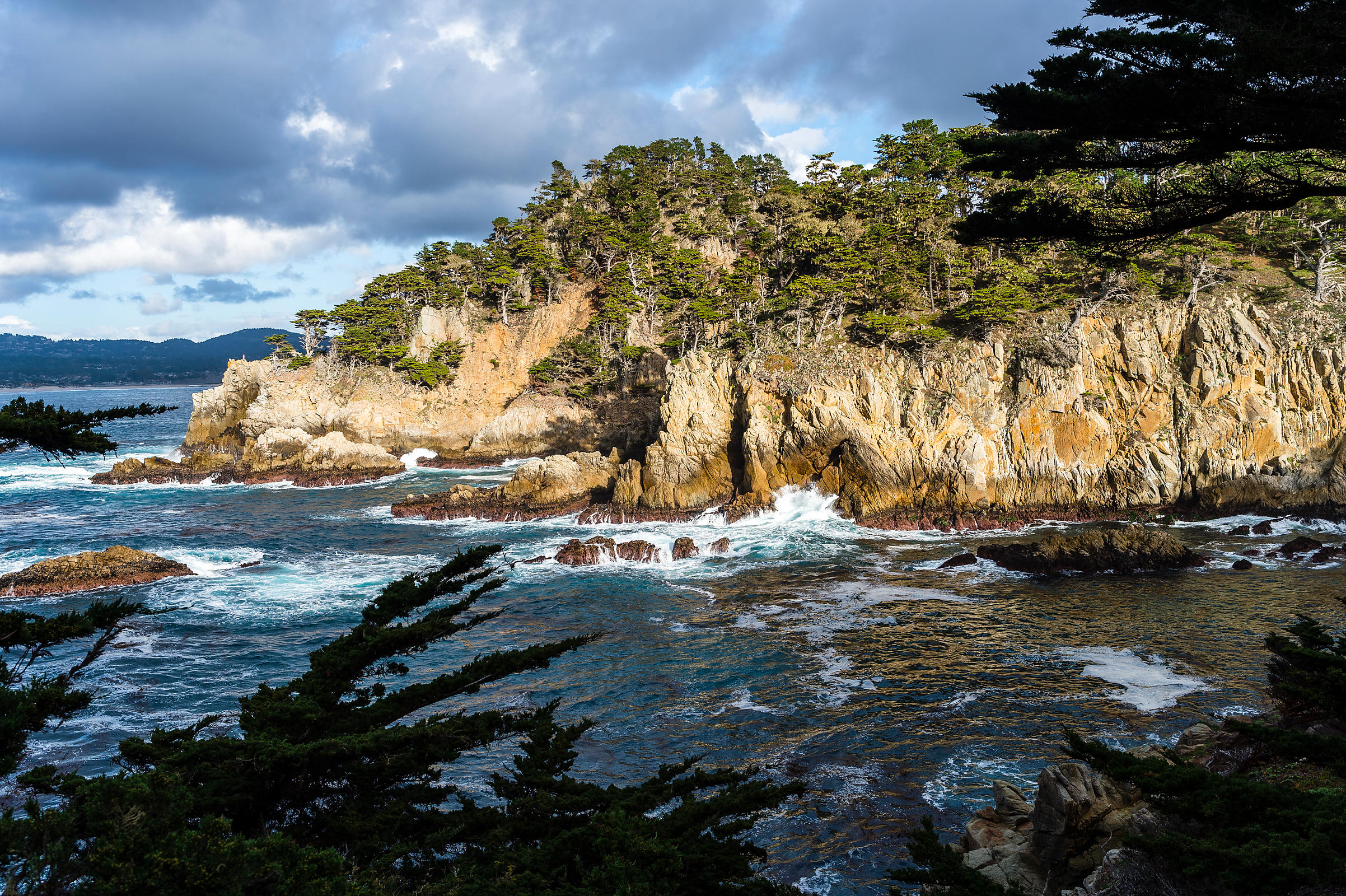 Point Lobos State Reserve, Carmel-by-the-Sea, Californie, USA.