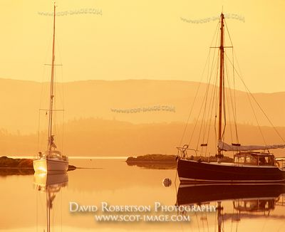 Image - Yachts at anchor at sunrise, Tayvallich, Argyll, Scotland