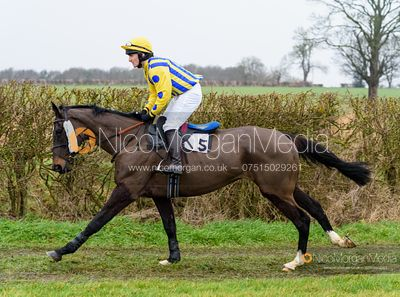 Will Bishop and MERRYDOWN BLACK - Race 5 - Restricted - The Midlands Area Club at Thorpe Lodge 26/1