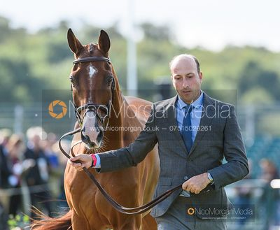 Tim Price and RINGWOOD SKY BOY at the trot up, Land Rover Burghley Horse Trials 2019
