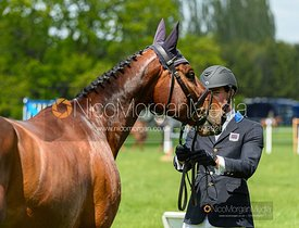 Alex Tordoff and COUGAR PC Z, Fairfax & Favor Rockingham Horse Trials 2019.
