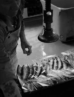 Packing the preserved and salted sardines. The Pilchard Works, Newlyn, Cornwall, England.