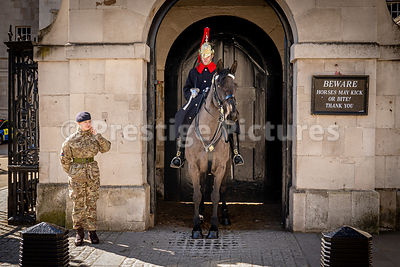 Mounted cavalryman and female soldier chatting