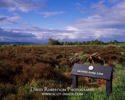 Image - Jacobite Army line, Culloden battlefield