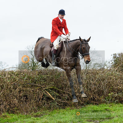 Ashley Bealby jumping a fence near Leicester Lane. The Cottesmore and Fernie Hunts at Hill Top 10/12