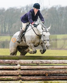 Quorn and Cottesmore Hunts at Twyford 26/2