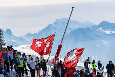 Freestyle_Skiing_Cross_-_Swiss_flags