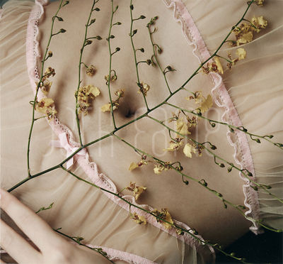 Closeup Of The Stomach Of A Beautiful Young Woman Wearing Sheer Lingerie And Holding Flowers