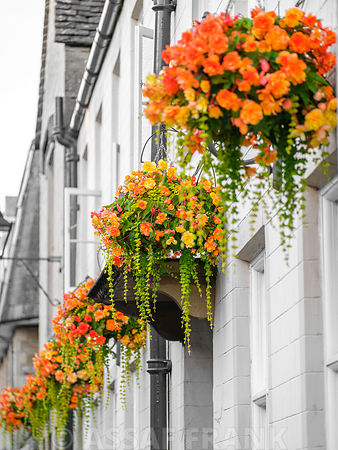 Flowers over windows of an old building in Tetbury, Cotswolds