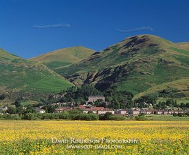 Ochil Hills & the Hillfoots