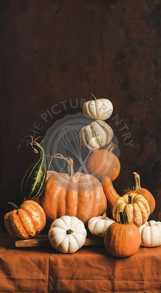 Colorful pumpkins of different shapes and size in pyramid composition