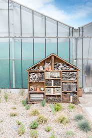 Large insect hotel, in front of a greenhouse-Spring-France