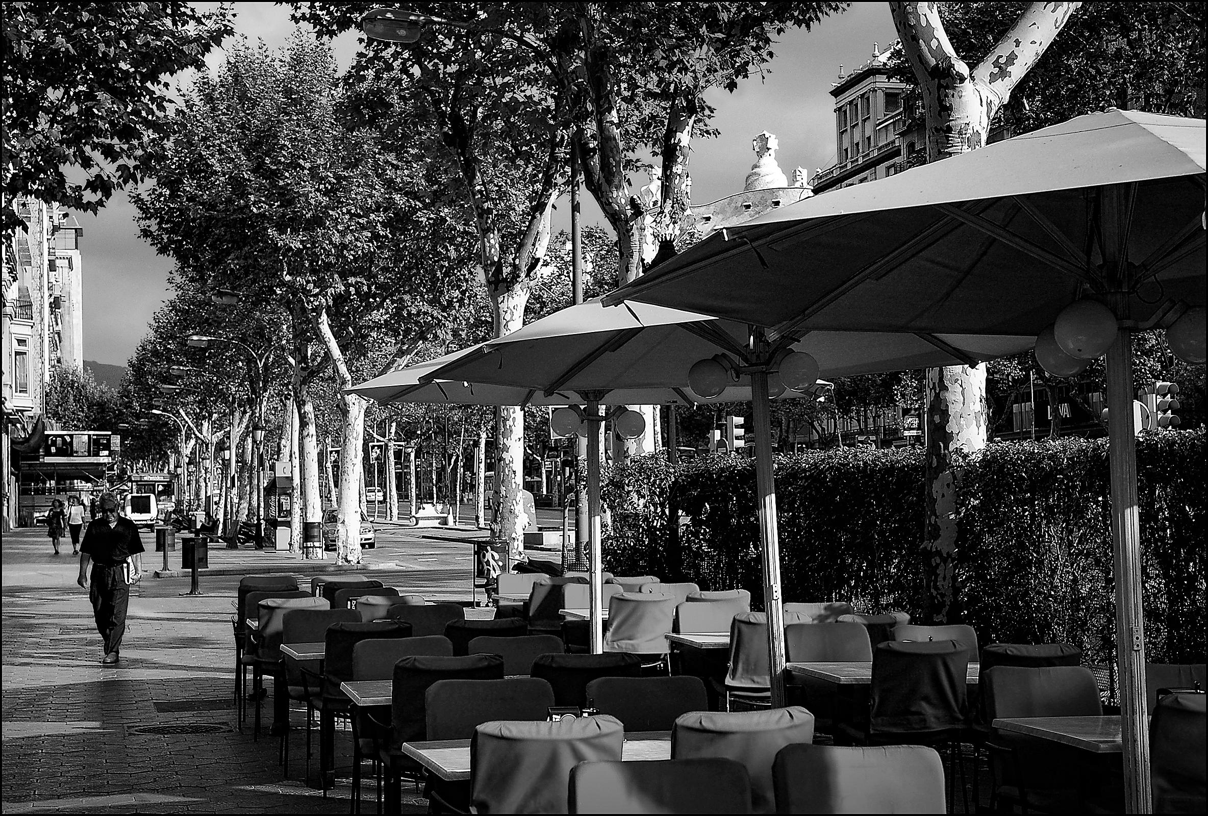 Cafe_Rosa_BW_final_copy
