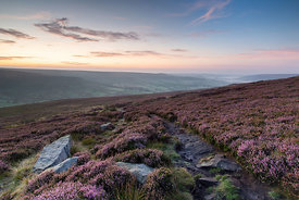 North York Moors National Park at Sunrise