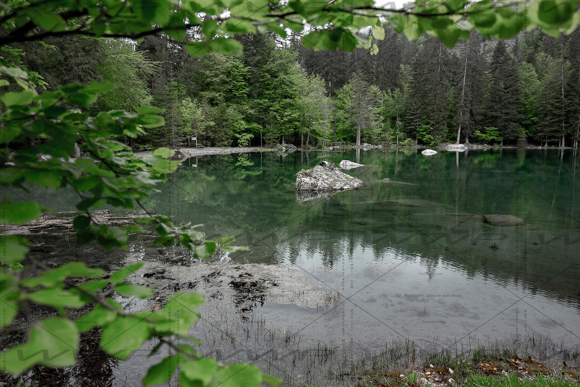 The Green Lake