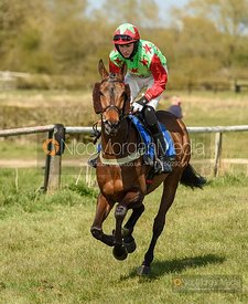 BINGO STAR (Jack Andrews) - Race 4 - 9YO and over Conditions, Garthorpe (3) Races 24/4