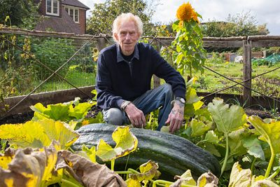 Watlington Allotments 2020